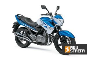 Jaki-akumulator-do-Suzuki-Inazuma-GW250-min